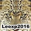 leoxp2016